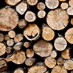 Image of Tips for Purchasing Firewood